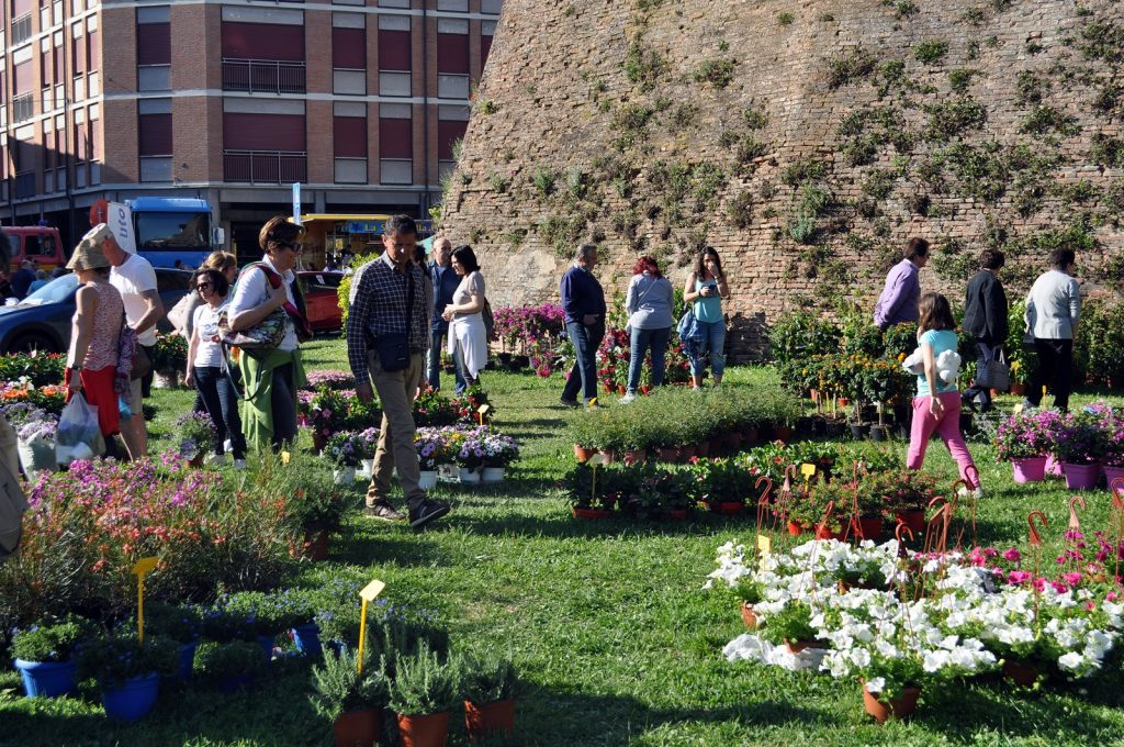 Piante, fiori e Dog Day al Lugo Garden Festival