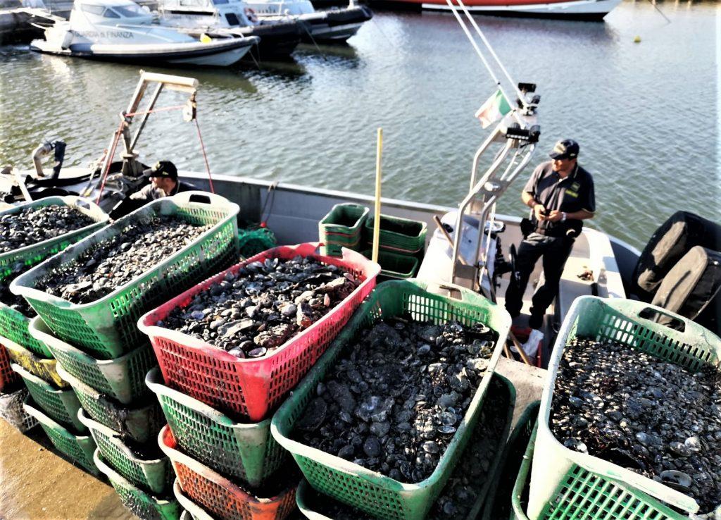 Ravenna, sequestrato un natante per pesca abusiva di molluschi