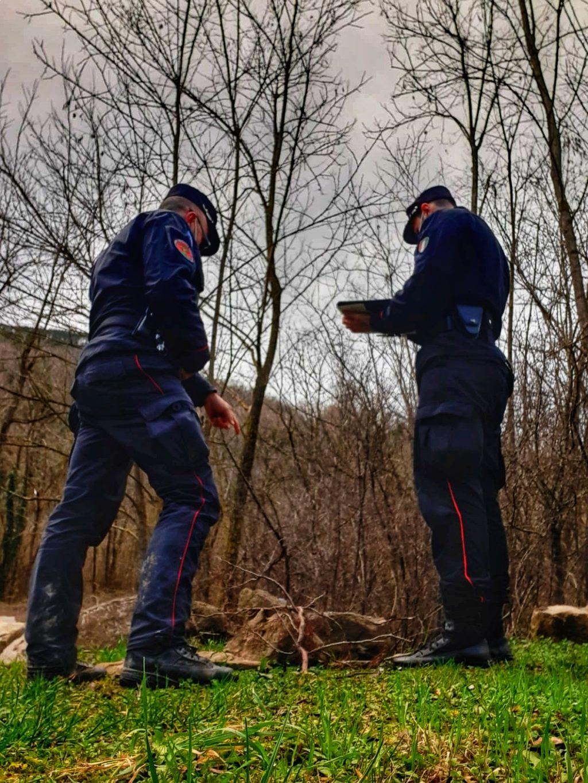 Abbandonati due serpenti lungo la sponda del fiume Bidente a Santa Sofia